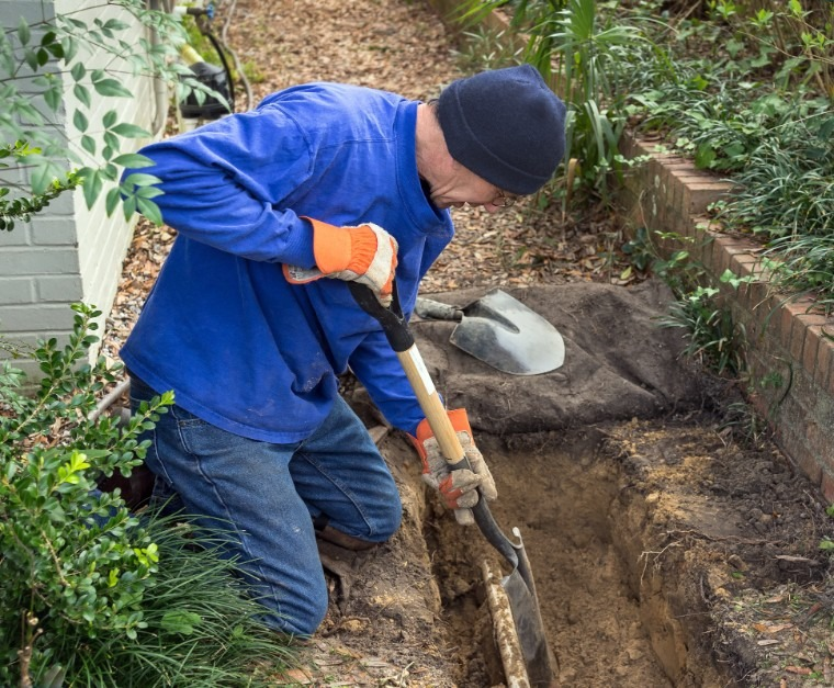 There are effective actions to take to prevent or remove roots in your sewer line.